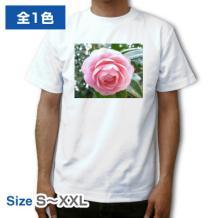 写真用Tシャツ ATH-151